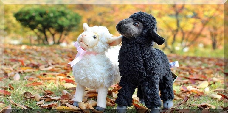 Welcome to the world unique collection of stuffed animals from around the world